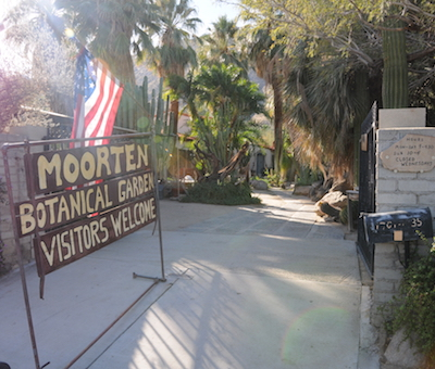 Things to Do in Palm Springs - Moorten Botanical Garden